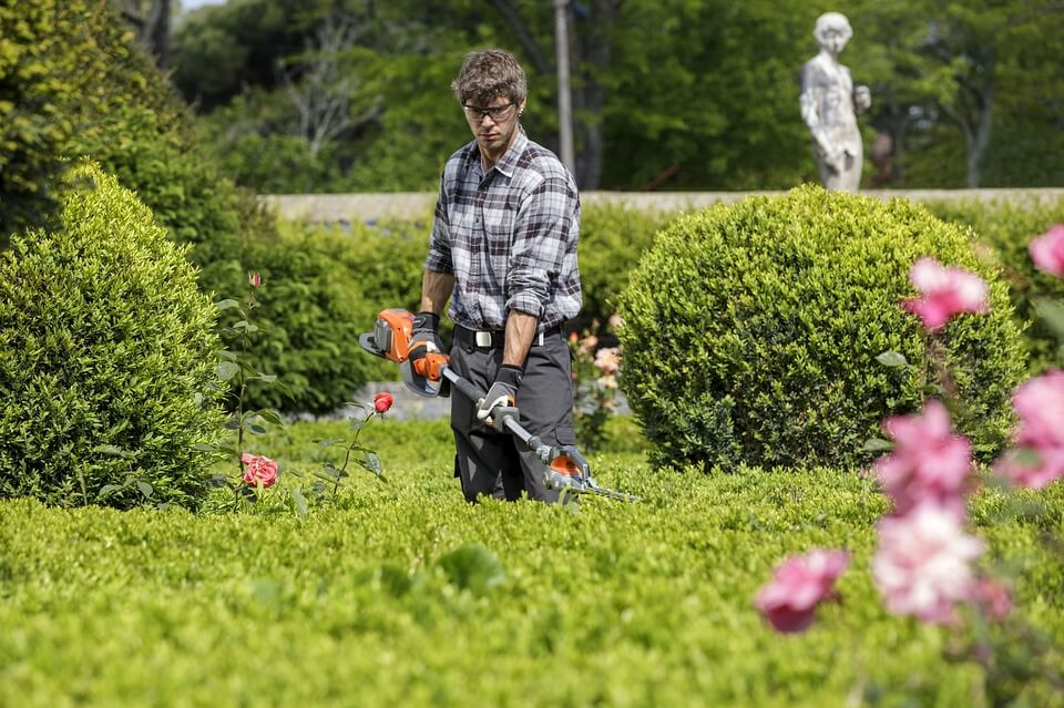 Comment avoir un jardin sublime malgr un emploi de temps for Emploi entretien jardin