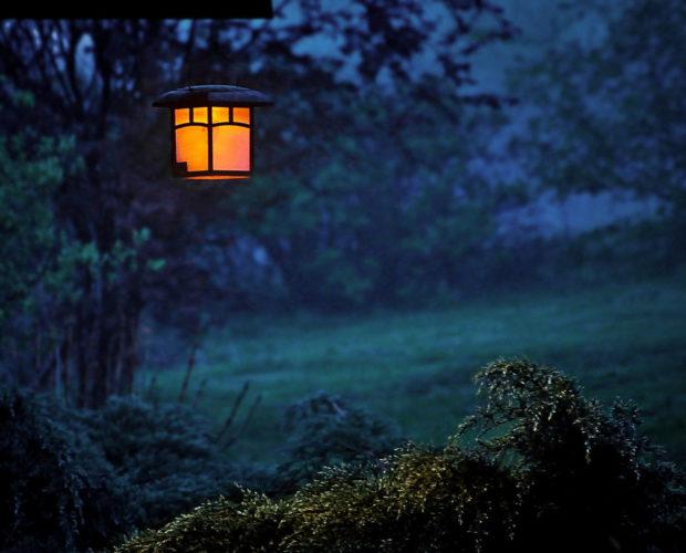 Comment sublimer son jardin avec le bon éclairage?