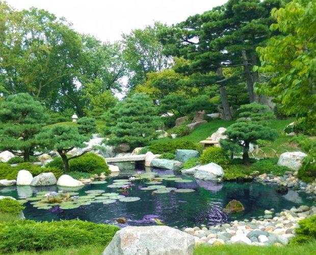 Aménager son jardin : 5 conseils de pro pour réussir ce projet à tous les coups