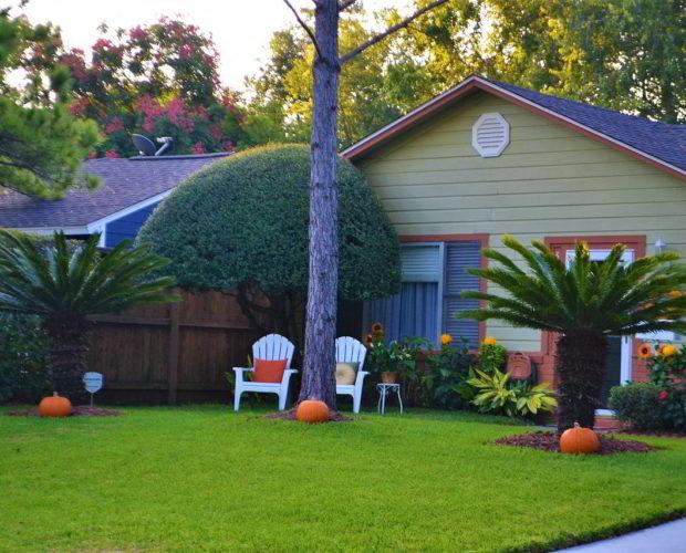 5 étapes à suivre pour bien aménager un jardin